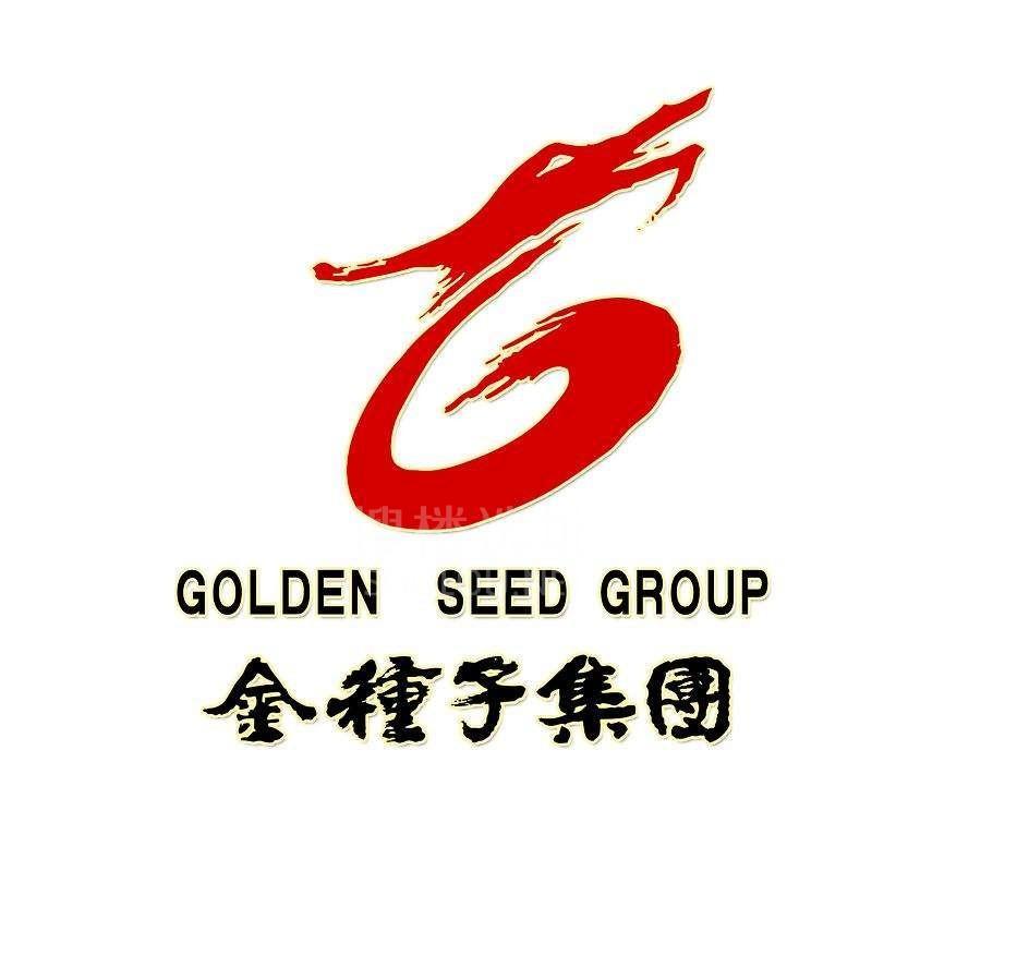 金种子集团